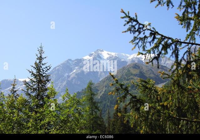 mountain meadow autumn above - photo #14