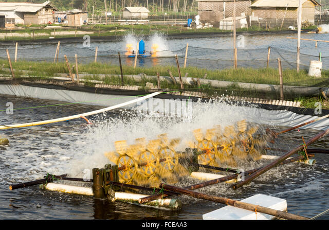 Aerator stock photos aerator stock images alamy for Fish pond aerator
