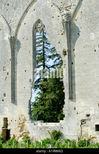 ruin ruined church monastery stock photos ruin ruined church monastery stock images alamy. Black Bedroom Furniture Sets. Home Design Ideas