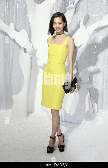 D Wire Dior – Spring / Summer 2012