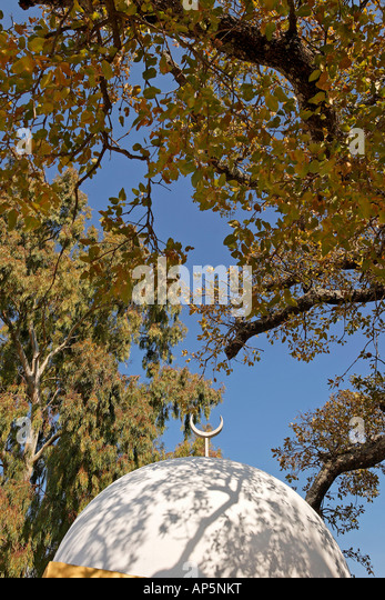 mount tabor muslim The name tabor is a hebrew baby name in hebrew the meaning of the name  tabor is: in the bible mt tabor is a landmark mountain near nazareth.