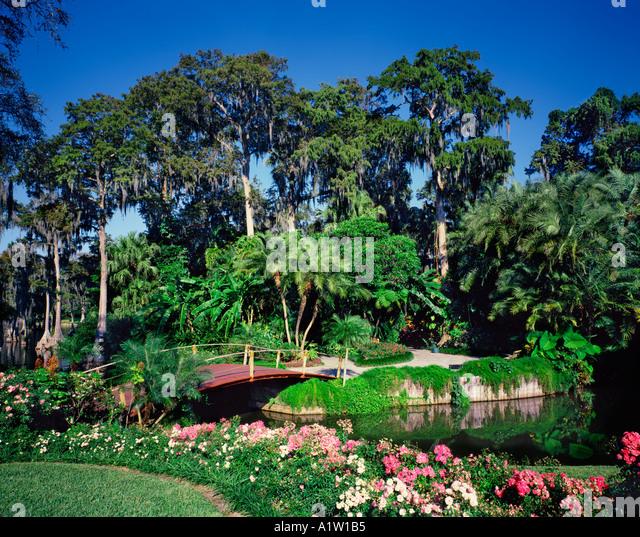 Cypress Garden Florida Stock Photos Cypress Garden