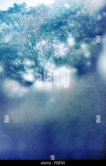 how to stop condensation on windows in winter australia