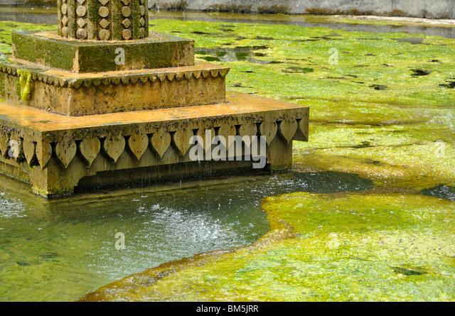 Sezincote Stock Photos Sezincote Stock Images Alamy