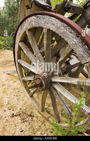 abandoned cart wheel the steel tired tyred wheel of an old weathered two wheeled ox