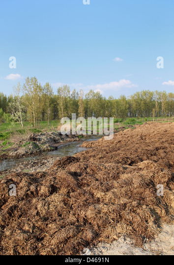 Mulch Pile Stock Photos Amp Mulch Pile Stock Images Alamy