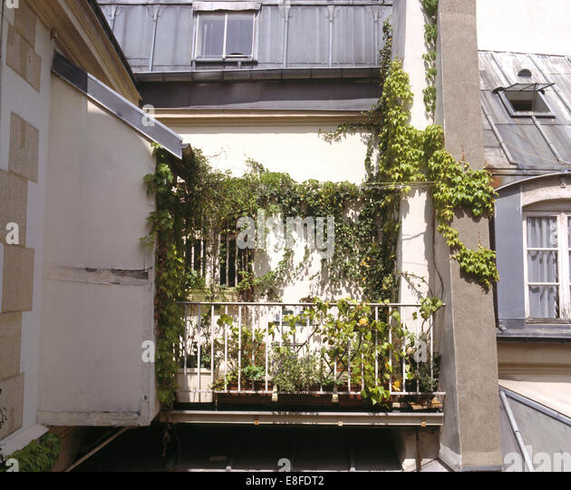 Balconies climbers traditional stock photos balconies for Plants for apartment balcony