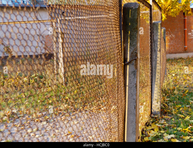 Wire Cage Leaves Stock Photos & Wire Cage Leaves Stock Images - Alamy