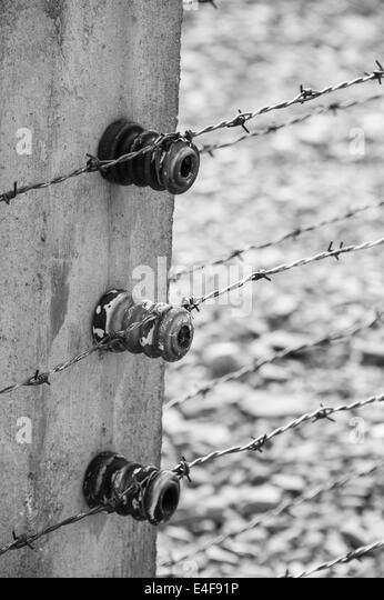 Auschwitz Electrified Wire Fence Stock Photos & Auschwitz ...