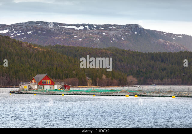 Norwegian House Stock Photos Norwegian House Stock