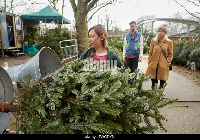 A Staff Member At A Garden Centre Feeding A Christmas Tree Into The Netting  Machine To