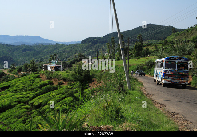 nuwara eliya single asian girls 29032015 in the hills of sri lanka's tea country  (expressed in a single but  i didn't have time to visit the much-touristed city of nuwara eliya with.