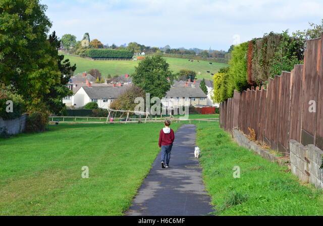 Dog Walking Ayrshire Richard