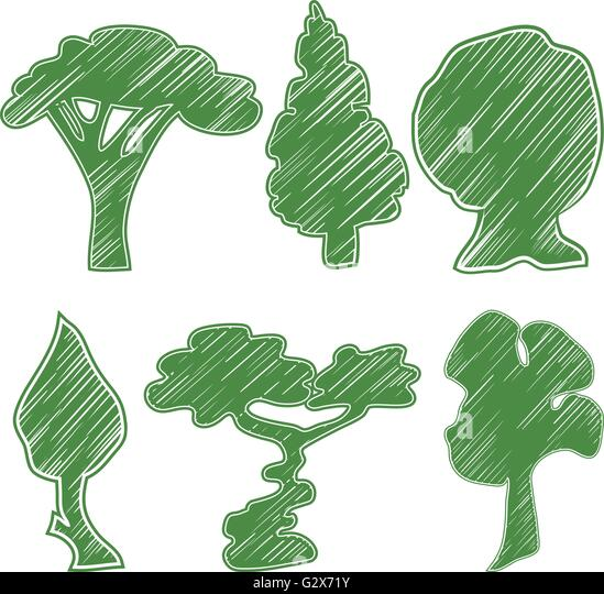 Line Natural Pine Trees Icons Stock Photos Line Natural Pine Trees