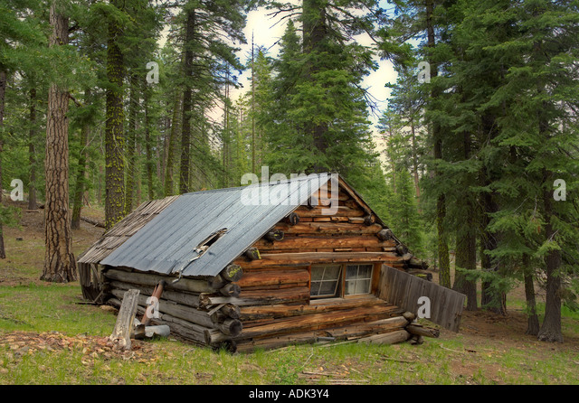 Woods Forest Cabin House Secluded Stock Photos Woods