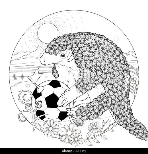 lovely armadillo coloring page in exquisite style stock vector
