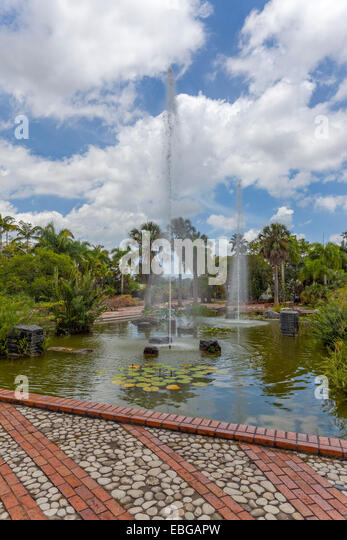 Hispaniola stock photos hispaniola stock images alamy for Cafe jardin scarborough
