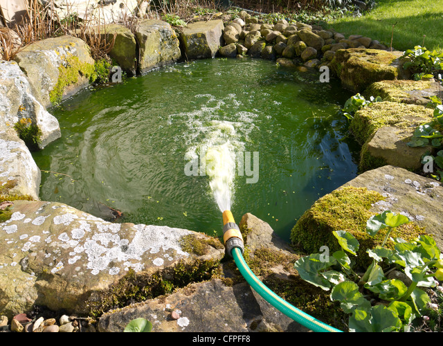 Refill water stock photos refill water stock images alamy for Garden pond hose