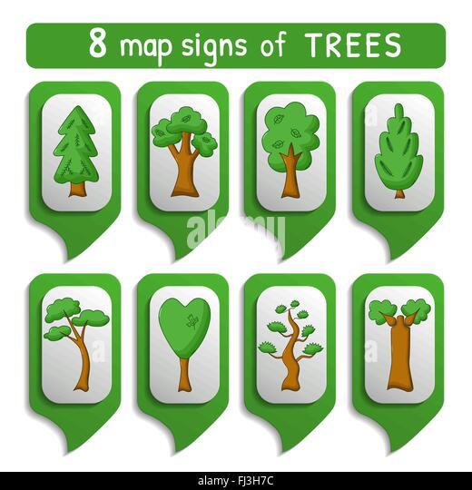 Juniper Trees Stock Vector Images Alamy