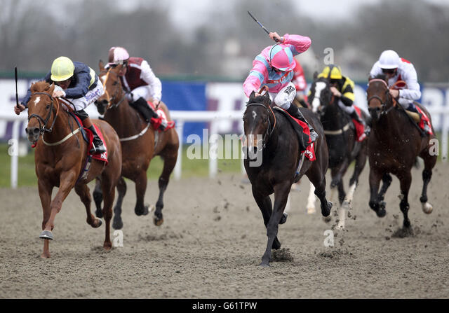 Conditions stakes at kempton park racecourse stock photos horse racing awt afternoon family fun day kempton park racecourse stock image negle Image collections