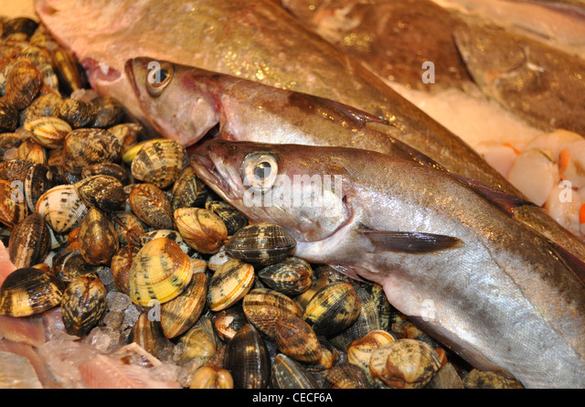 Fishmongers fish counter stock photos fishmongers fish for Daily fresh fish