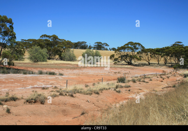salinity in australia Csiro land and water salinity australia's rivers and landscapes are under threat to rising salinity salinity affects regions in all parts of australia but particularly western australia, south australia and in the.