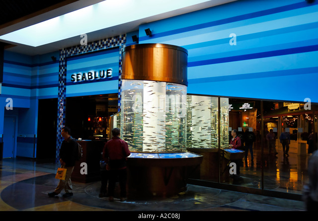 Sardinops stock photos sardinops stock images alamy for Fish restaurant mgm