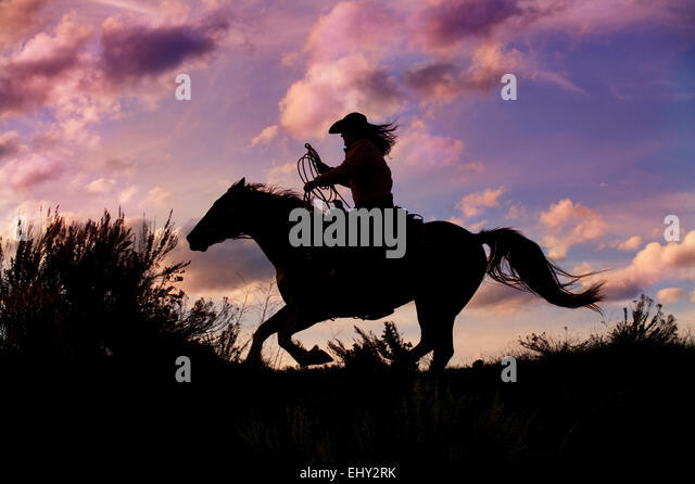 Image result for cowgirls and horses pictures