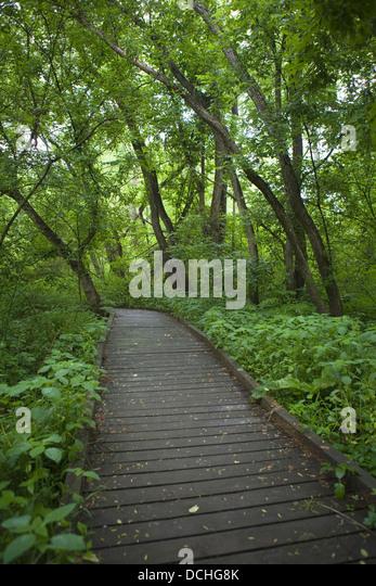 Delaware Nature Center Ashland
