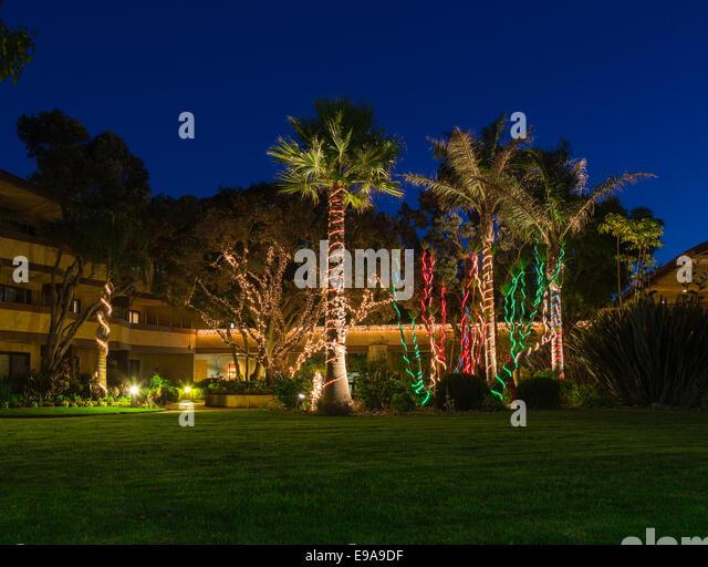 christmas lights on palm trees stock image