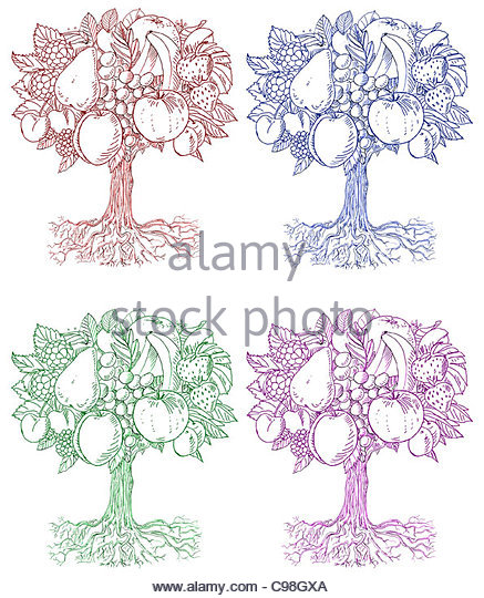 Tree Of Life Drawings Stock Photos Amp Tree Of Life Drawings