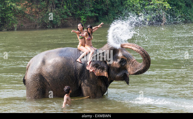 Elephant spraying water - photo#28