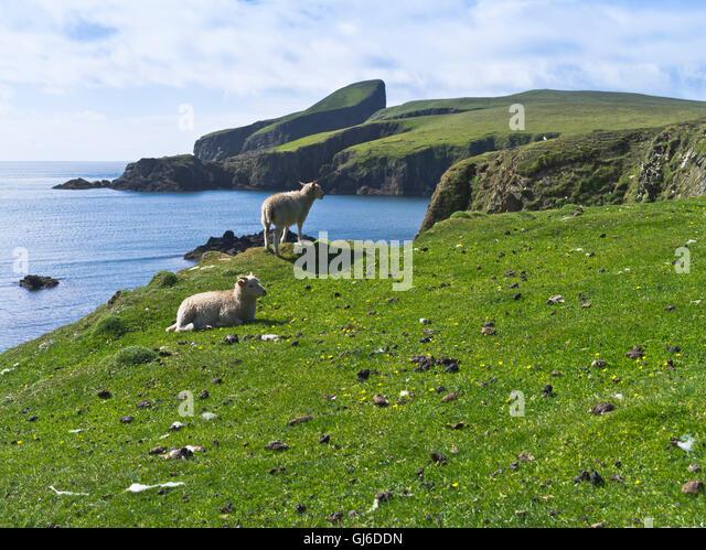 Fair Isle National Trust Landscape Coast Stock Photos & Fair Isle ...
