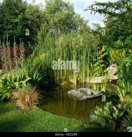 Small circular garden pond borders stock photos small for Circular garden ponds