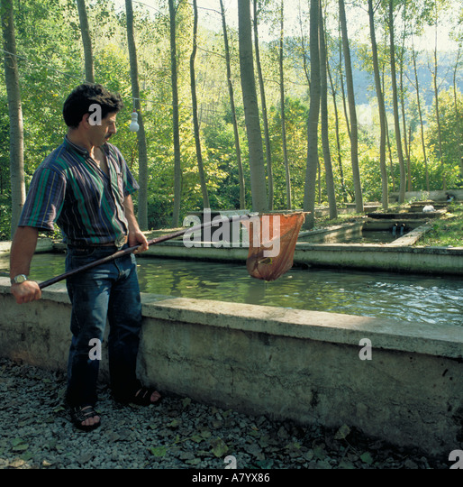Fish farming stock photos fish farming stock images alamy - Trout farming business family mountains ...
