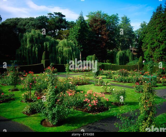 Irish National Botanic Gardens, Dublin, Co Dublin, Ireland; Rose Garden    Stock