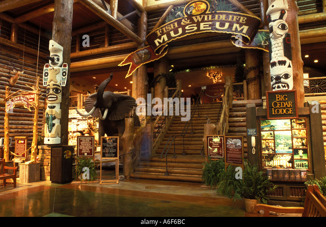 Bass pro shops interior stock photos amp bass pro shops interior stock