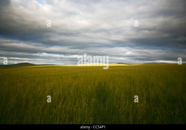 Hulun Buir China  city images : Hulunbuir China Stock Photos & Hulunbuir China Stock Images Alamy