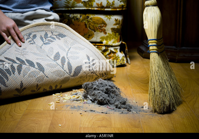 Sweeping Dirt Under Rug   Stock Image