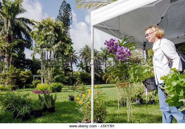 Miami Beach Botanical Gardens Stock Photos & Miami Beach Botanical ...