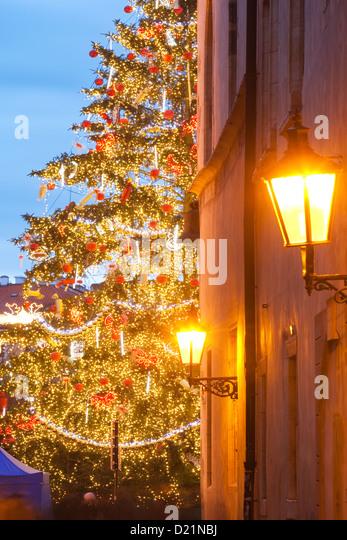 Medieval Christmas Tree Stock Photos Medieval Christmas Tree  - Medieval Christmas Tree