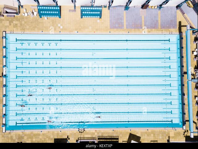 aerial view of swimmers in olympic swimming pool tenerife top training santa cruz de - Olympic Swimming Pool Top View