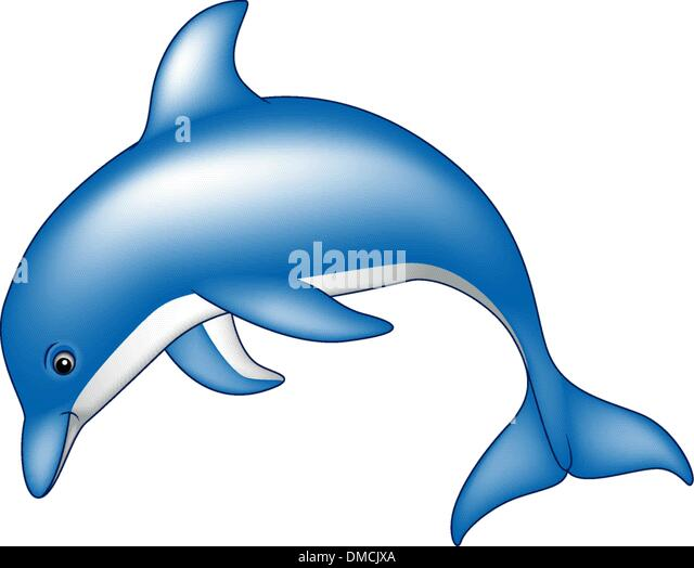 Zoo further Clipart Big Gray Ox besides Stock Vector Orca Collection in addition Bride And Groom Clipart together with Freshwater Fish Pictures. on simple cartoon whale