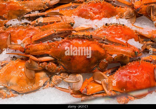 fish market australia stock photos fish market australia. Black Bedroom Furniture Sets. Home Design Ideas