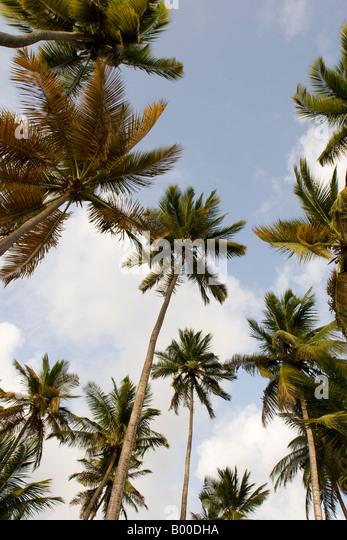 Santa Lucia Dr West Palm Beach