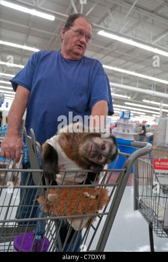 Wal Mart Cart Stock Photos Amp Wal Mart Cart Stock Images