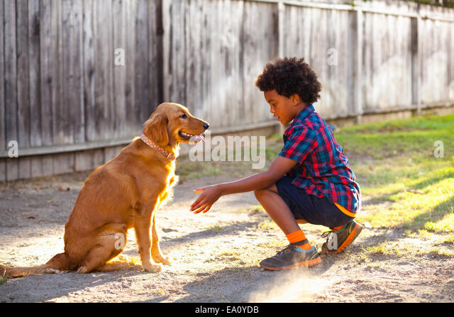 how to train a dog to give paw