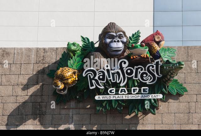 Rainforest Cafe Sawgrass Mall Entrance