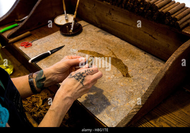tobacco leaves in hands stock photos tobacco leaves in hands stock images alamy. Black Bedroom Furniture Sets. Home Design Ideas