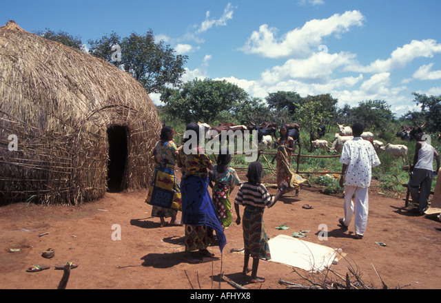 African Family Huts Village Stock Photos & African Family Huts Village ...